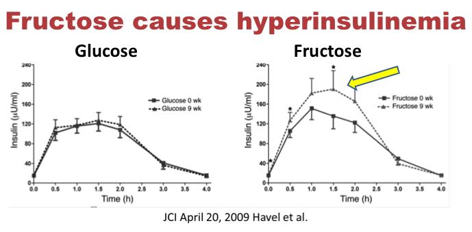 OMG - Problém glykemického indexu potravin - fruktóza