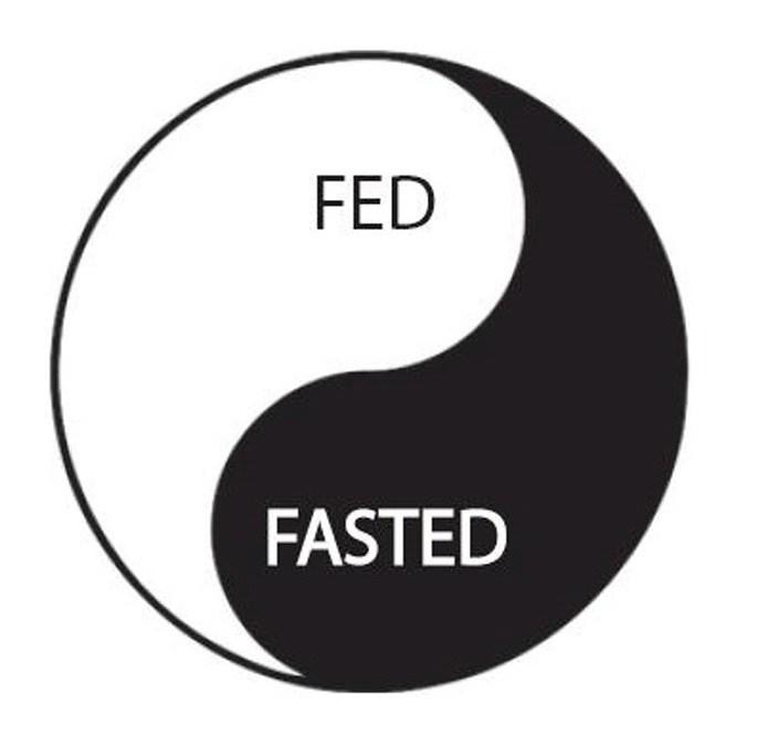 OMG - Kdy jíst - přerušovaný půst (intermittent fasting)