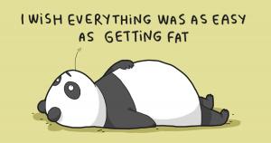 OMG - Kalorie, inzulín. Přeji si, aby vše bylo tak jednoduché jako přibírání.